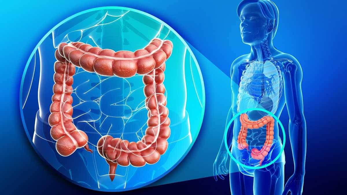 Что нужно есть при колите кишечника